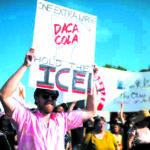 Foto por Agencias Los jóvenes protegidos por DACA han salido a las calles.